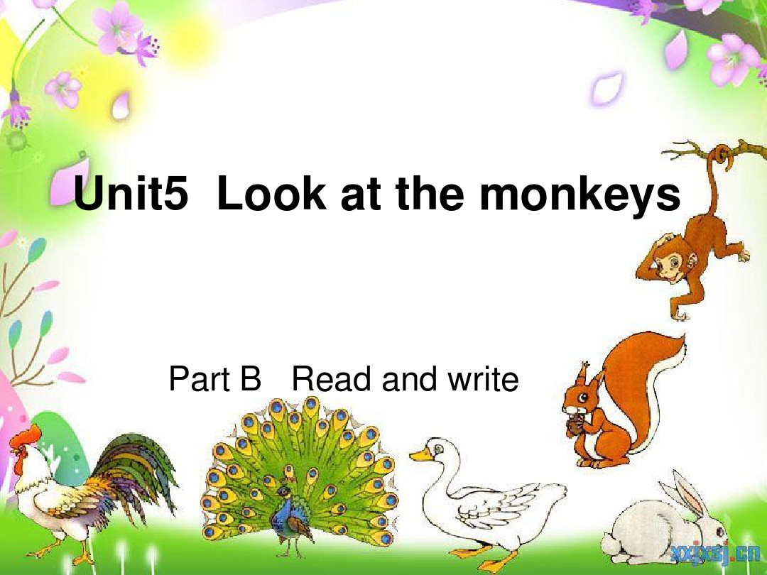 pep五年级下册英语unit5 look at the monkeys B read and write