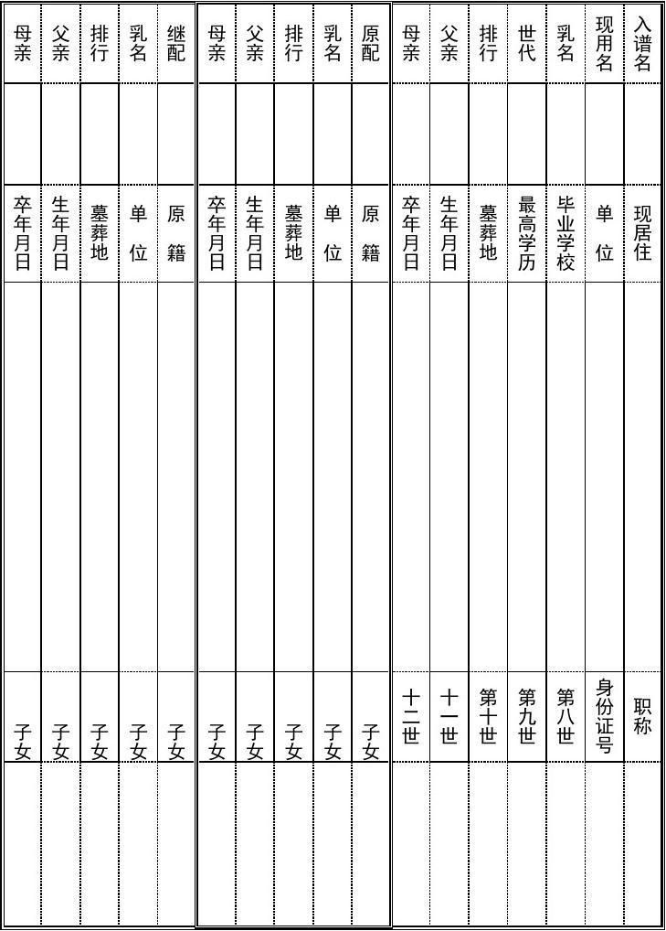 靖远孙氏家谱信息登记,采用竖表格式图片