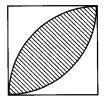M 与圆有关的组合图形