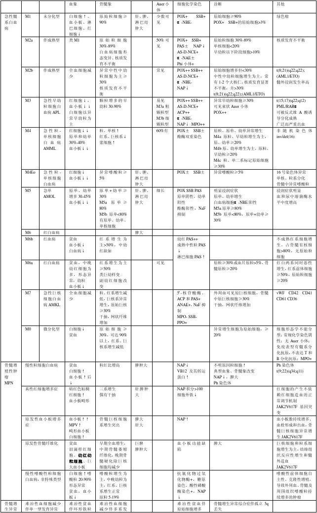白血病检验-血液学-临床检验
