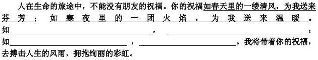 2010年分类汇编中考语文试题专题五·仿写
