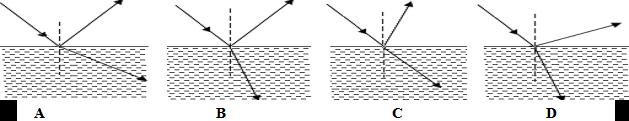 2012-2013初中物理八年级半期考试试卷