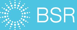 BSR_报告_-_集装箱运输行业的可持续发展趋势_-_2010年10月