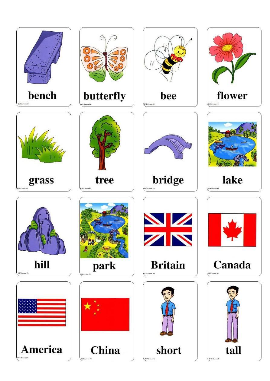 二年级上册英语单词卡图片