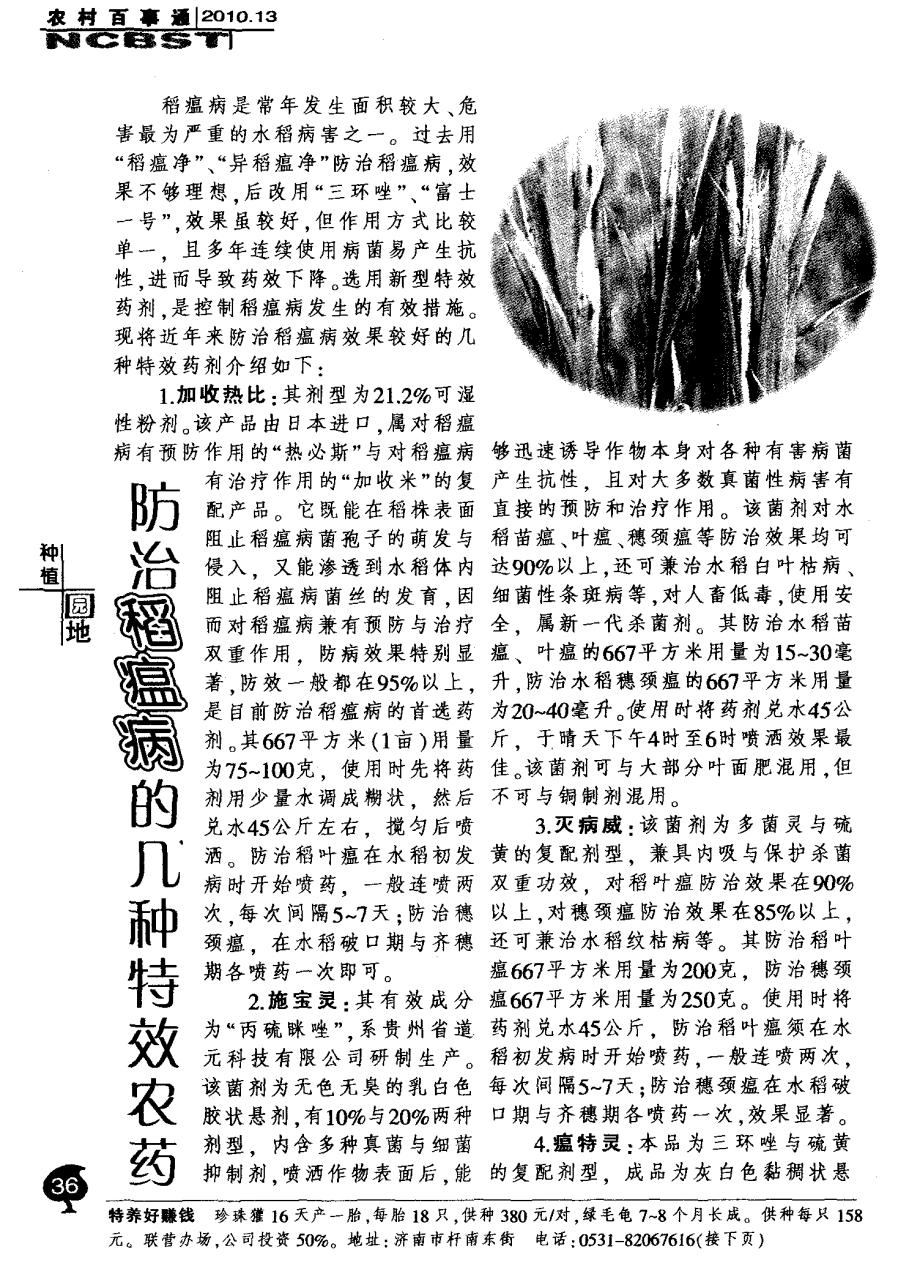 防治稻瘟病的几种特效农药