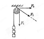 江苏省东海县南辰中学九年级物理上册《11.2 滑轮》练习答案