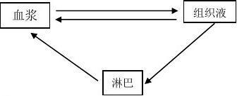 必修三 稳态与环境 知识梳理1-3章