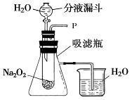 2012年中考化学实验探究题专题复习及答案