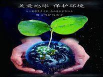 保护环境电子小报