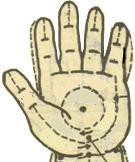 人体常用穴位按摩保健方法(动画图解)