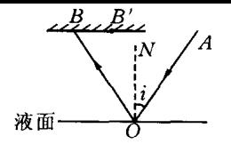 高二物理光学试题总结及答案详解
