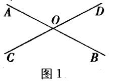 6.3 余角、补角、对顶角(2)