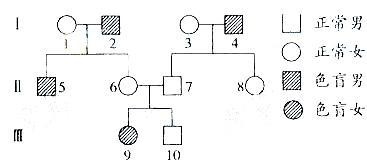 12性别决定与伴性遗传
