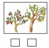 2014新苏教版一年级数学上册全套单元试题试卷(精编版)