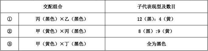广东省香洲区四校联考2019年生物高一下学期期末模拟试卷+(7套模拟试卷)