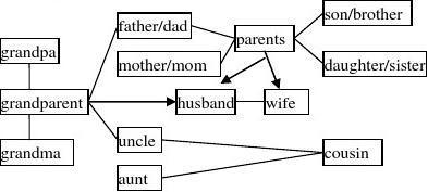 (精品)中考英语词汇话题联想记忆_第5讲_Family_Tree_学案