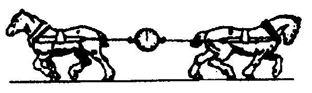 沪科版2014年八年级物理下学期期中考试试卷