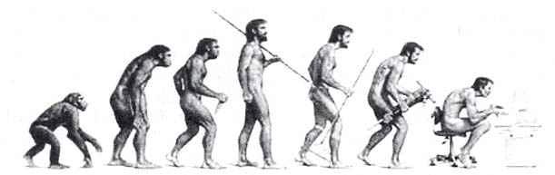 猩猩与人的基因差只有2%