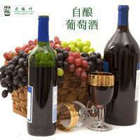 家庭自酿葡萄酒,发酵阶段对设备的密封要求解释~