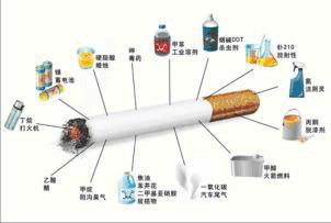 禁烟禁毒电子小报模板A3