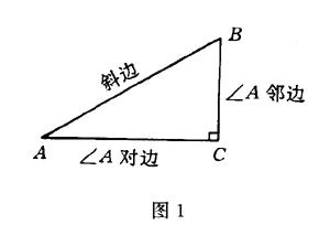 教案新人1.2任意角的三角函数日志2班级教版数学高中高中记录表图片