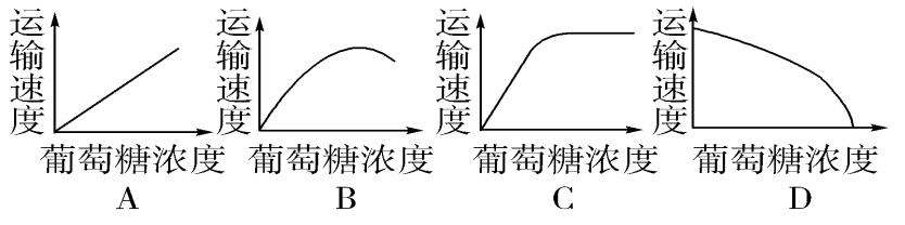 高考生物一轮复习学案必修1-第4章第3节物质跨膜运输的方式