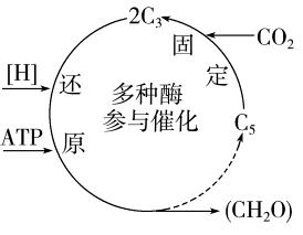 江苏省扬州市2015年高二学业水平测试模拟试卷(二) 生物 Word版含答案