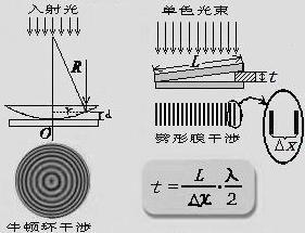 牛顿环和劈尖干――实验报告