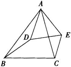 相似三角形的复习讲义