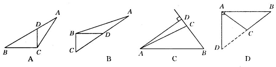 三角形中线 高线 角平分线(共1课时+1练习)答案图片