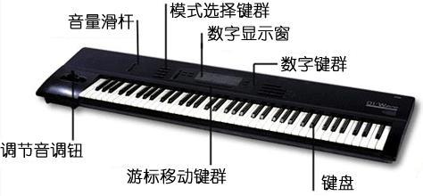 电子琴指法练习答案图片