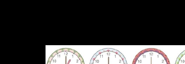整点半点时钟试题