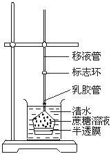 (新课标)高中生物物质跨膜运输的实例(第2课时)教案新人教版