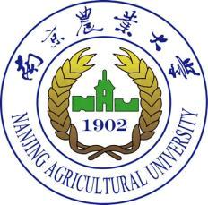 南京农业大学论文