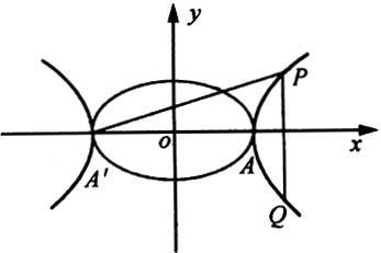 """""""情侣""""曲线—椭圆与双曲线"""