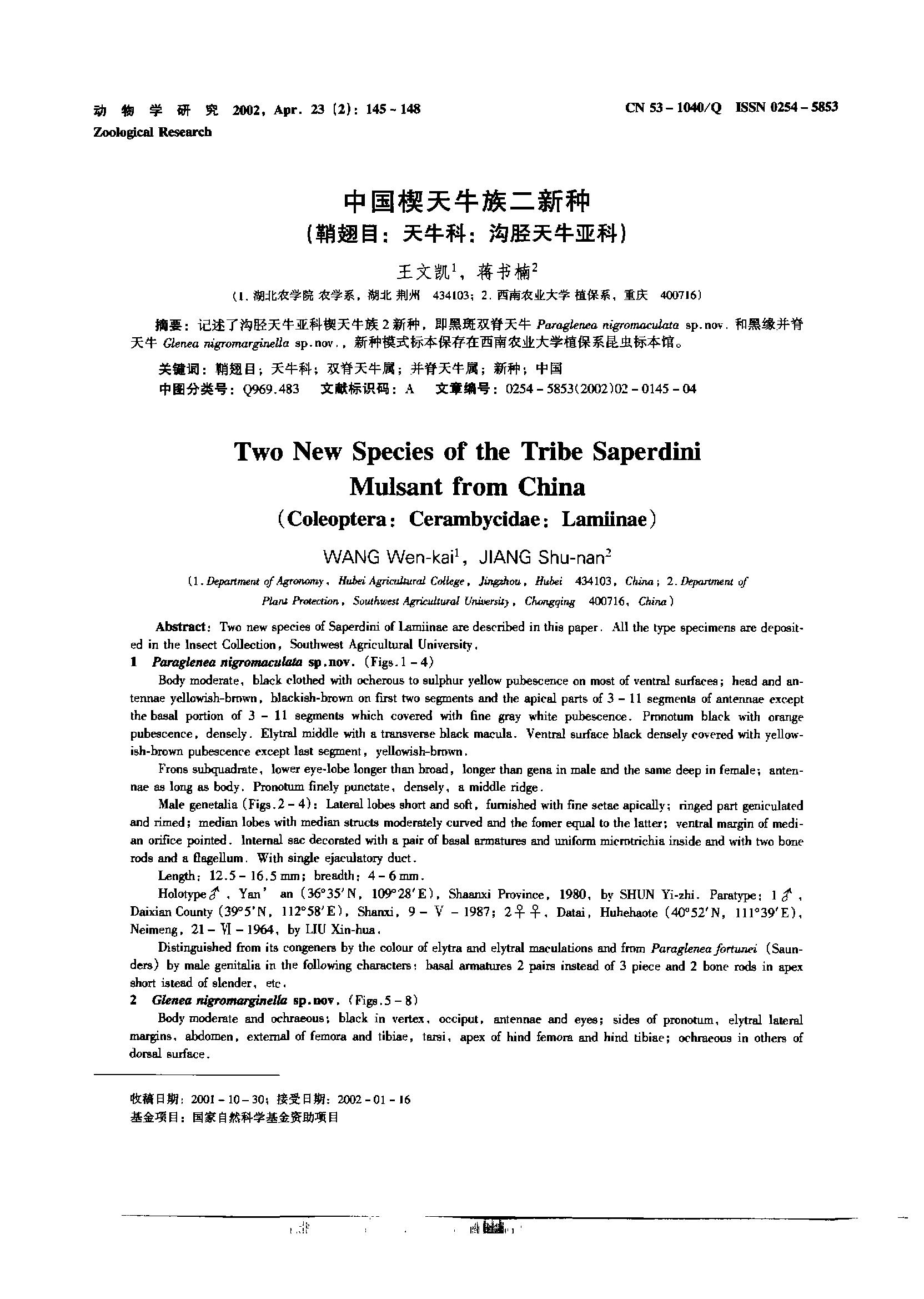 中国楔天牛族二新种(鞘翅目:天牛科:沟胫天牛亚科)