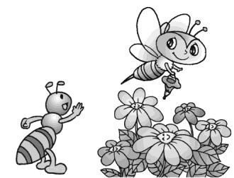 采蜜的蜜蜂叫做工蜂.工蜂一生中大部分时间是用来采花酿蜜的.图片