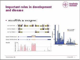 microRNAs生物信息学简介