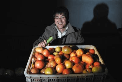 海归放弃移民回国 京郊当农民