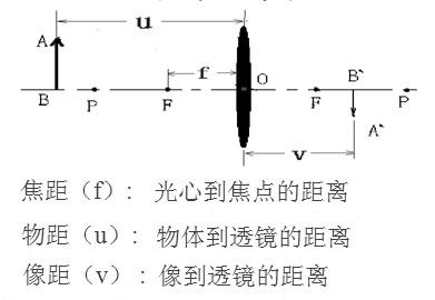 初中生 凸点_凸透镜成像规律 图 (1)_word文档在线阅读与下载_无忧文档