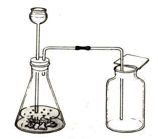 过氧化氢制氧气_氧气的制法_word文档在线阅读与下载_免费文档