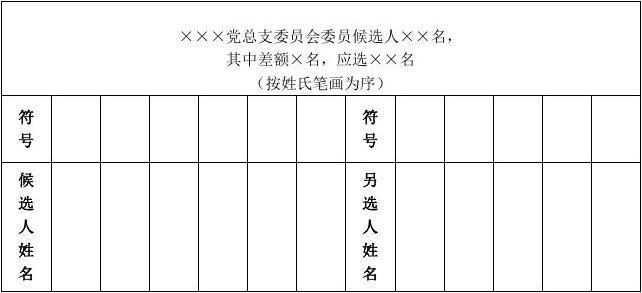 选票样式1