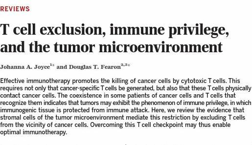 T cell exclusion, immune privilege,and the tumor microenvironment