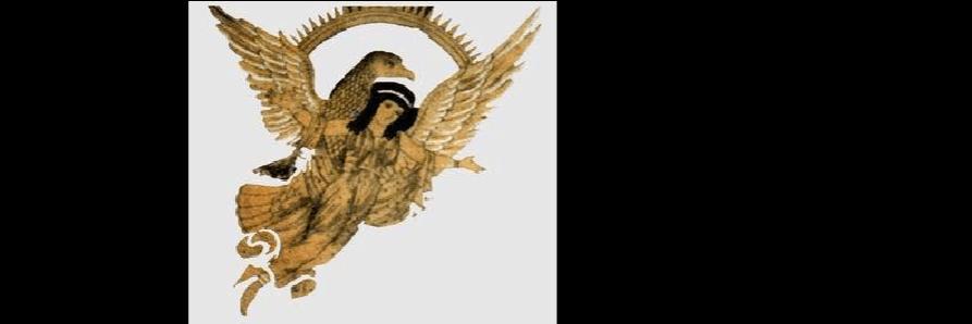 世界鸟崇拜以鹰为尊