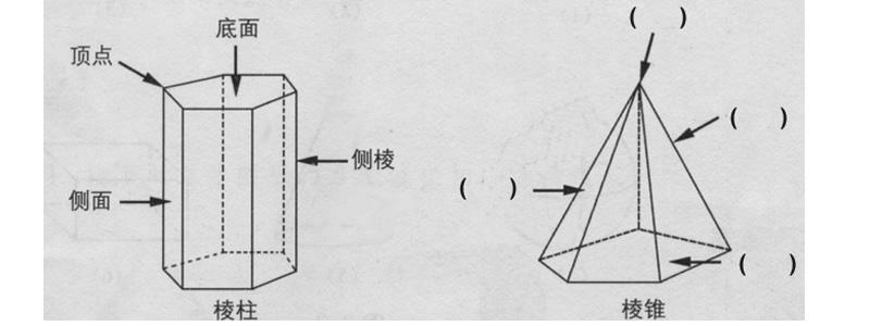 江苏省扬州市邗江美琪学校七年级数学上册 5.1 丰富的图形世界(第1课时)教学案