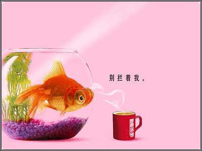 此系列广告借用了或拟人, 或幽默的画面和语言风格特点, 将广告信息图片