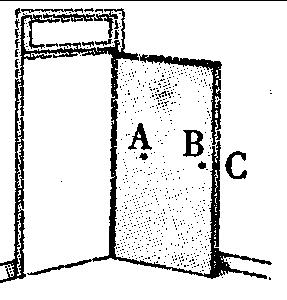 物理实验探究专题7 力的三要素和重力与质量关系