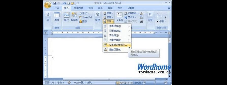 通过设置Word2007文档页码格式