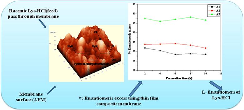 女人��.�y`f��,yi&�l$yl�_lm membrane trans-1,4-diaminocyclohexane trimesoyl chloride