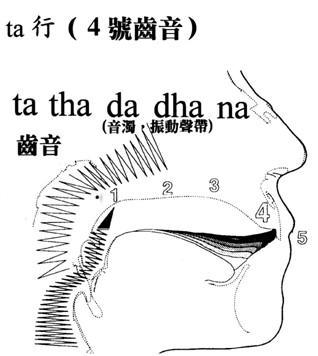 梵文51字母汉语读音对照表图片